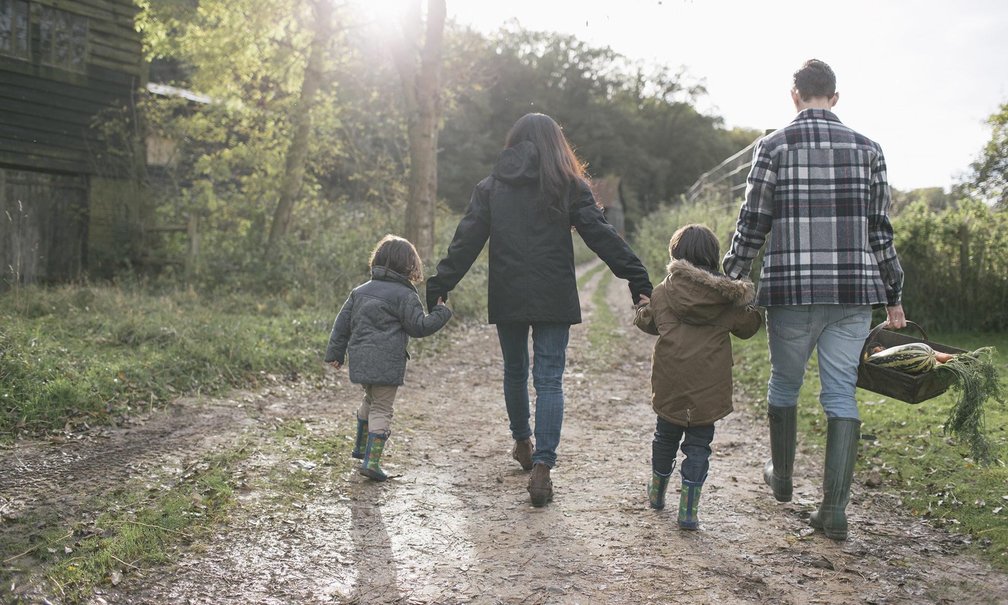 Rebuilding the happy family